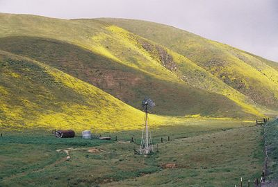 3/20/05 Hwy 58 through the Temblor Mountains (descending into Carrizo Plain)