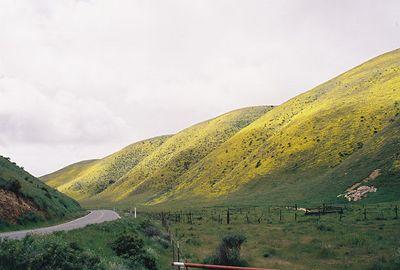 3/20/05 Hwy 58 through the Temblor Mountains (descending into Carrizo Plain)