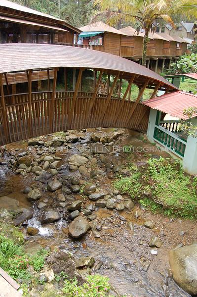 Bridge at the Pork Trail