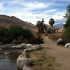 Whitewater Preserve, a few miles from where we stayed. Lots of famous hiking trails meet here.