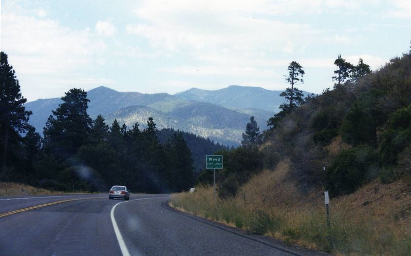 Town of Weed, enroute to Castle Crags