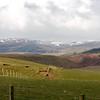 Como dicen los escoceses, pueden tener las cuatro estaciones del ano en un dia. Nieve en el fondo, con nubes, y donde estabamos nosotros sol y praderas verdes.