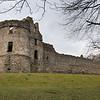 Luego de la muerte de Wiliam Douglas en manos del rey James II, los Black Douglases se rebelaron en contra del rey Stewart. Esta era la excusa que James necesitaba para destruir la familia y para 1455 fueron derrotados y todos sus titulos y propiedades fueron tomados por la corona.