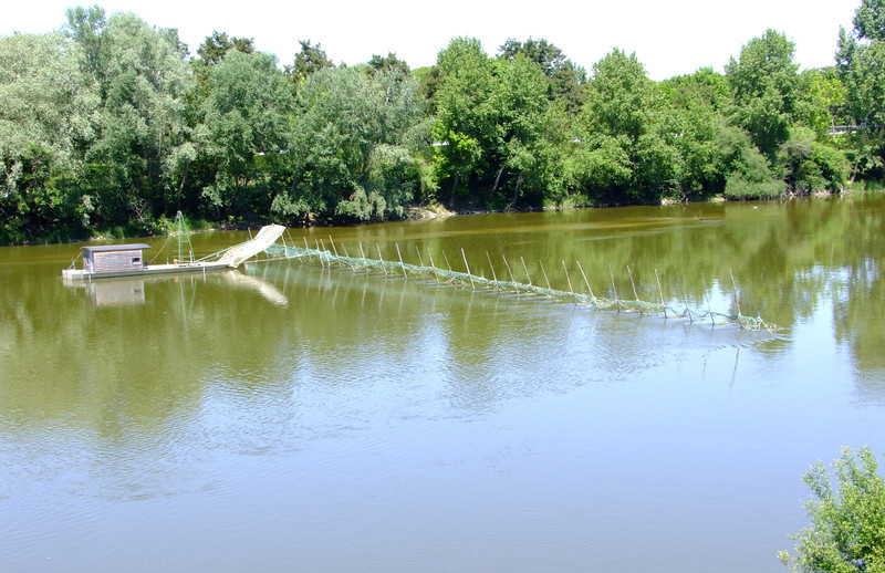 Some sort of trap on a part of the Loire River.