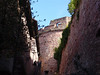 In the Heidelberg Castle Moat
