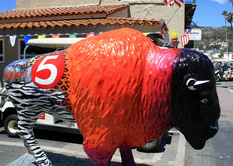 One of the last few ornamental buffaloes in downtown Avalon (there were a ton more in 2004). Note Spike on top of him.