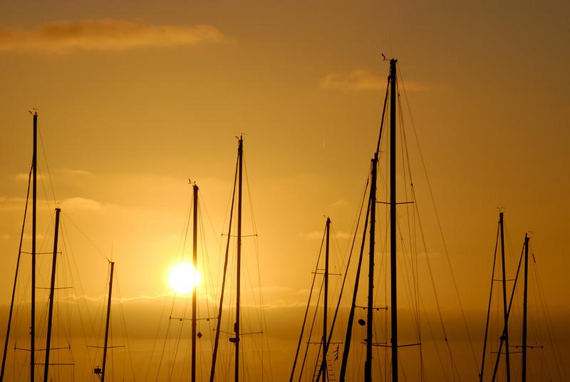 Sunrise and boat masts