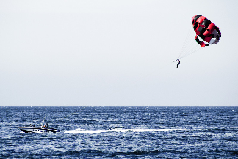 Parasailer (is that a word?)