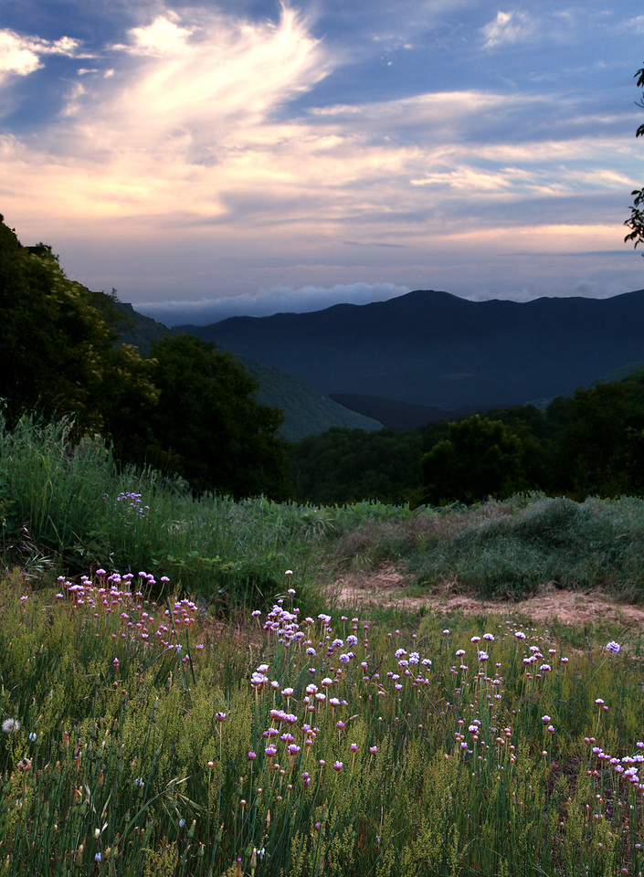 view from the yard, looking south from El Puig Research Station, Montseny Natural Park, Catalunya, Spain