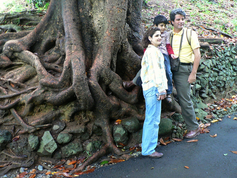 Roots and people from a bus group at the Botanical Gardens