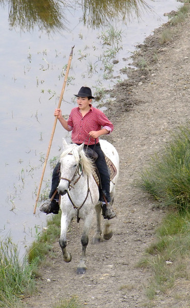 A horseman on one of the white horses famous in the Carbonniere area.  Note the spear with the tip - a symbol of the area.