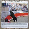 A game (non-lethal) involving bulls and fighters is held in a ring in the village of St-Laurent d'Aigouze.  This picture from a poster.