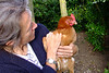 "Alix and one of her four ""happy chickens""."