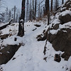 With 500 foot long and 80 foot high tressel gone, we hiked down into the valley and then up a steep hill.  Ski poles are recommended, XC skis not.