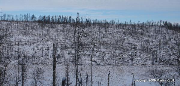 Centennial and Kekekabic Trail Clearing