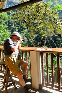 Birding from the deck by David Shaffer