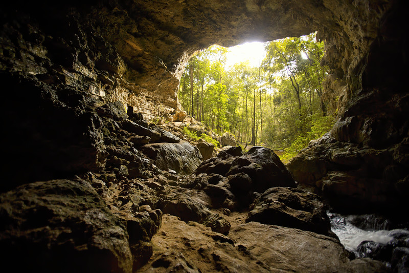Río Frío Cave in Mountain Pine Ridge, Belize