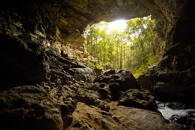 Río Frío Cave in Mountain Pine Ridge, Belize