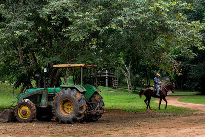 Martz Farm, Belize