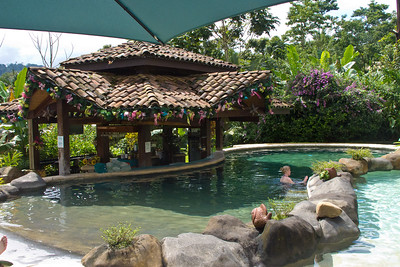 Hotel Mountain Paradise pool and bar
