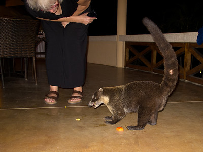 Jacquie gave him some leftover watermelon.