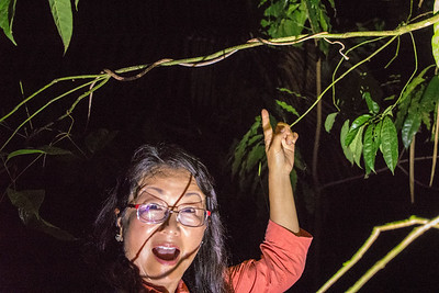 Sheri points to the snake in the tree