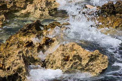 2006-05-01_08-47-14_foss