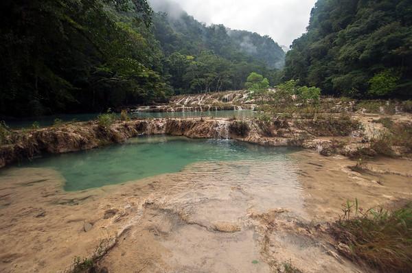 Tropical swimming pools