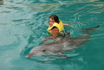 20090524_23-42-32_dolphinarius