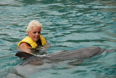 20090524_23-42-38_dolphinarius