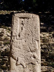 Stone Stela #9 - Lamanai, Belize.