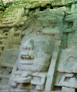One of the huge carved faces at the Mask Temple - Lamanai, Belize.
