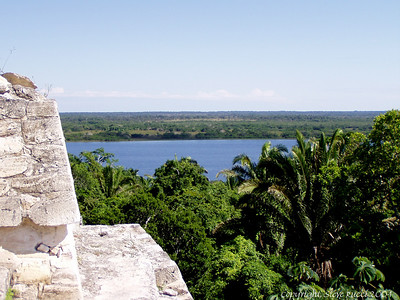 Looking out to the river from the top of the temple at Lamanai, Belize.