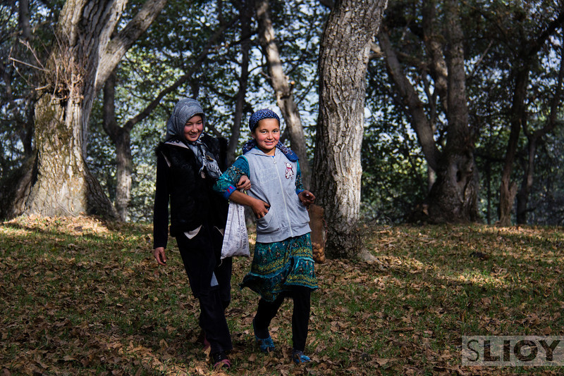 Young girls collecting walnuts in the Arslanbob Walnut Forest.Jalalabad Province, in southern Kyrgyzstan