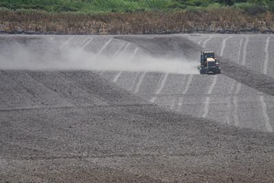 Preparing the flower fields, near Lompoc CA