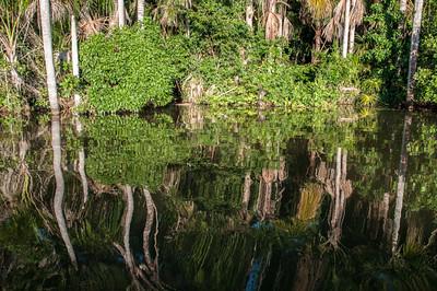Lake Sandoval14