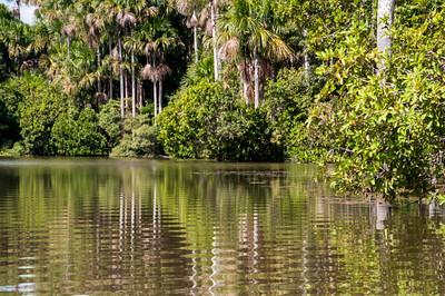 Lake Sandoval03
