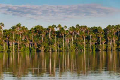 Lake Sandoval16