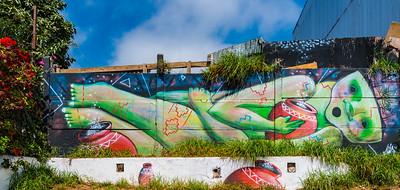 Valparaiso Sidewalk Art