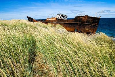 Amedeo & Dune Grass- Chile