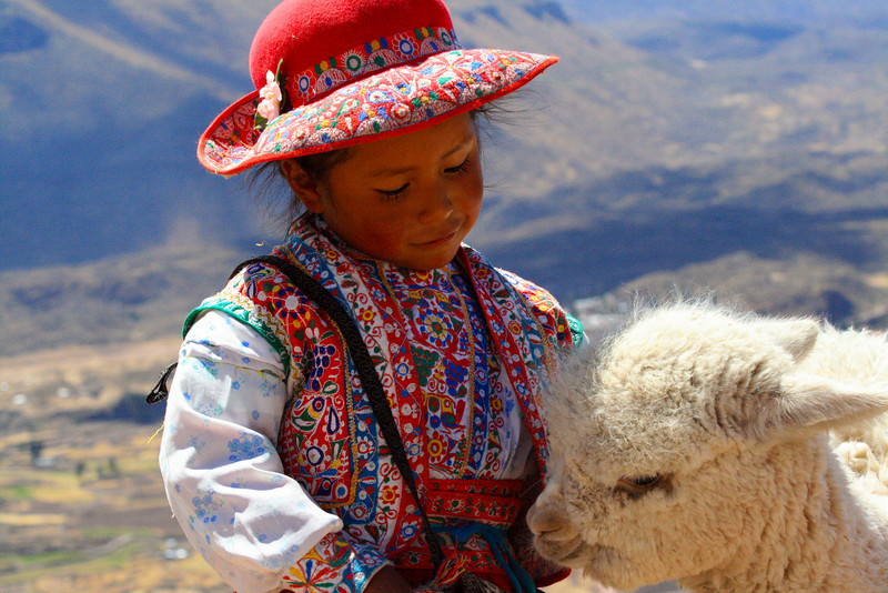 Young Lady and Alpaca Roadside - Peru
