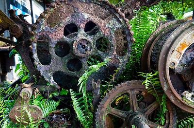 Rusty Machinery- Tortuguerros, Costa Rica