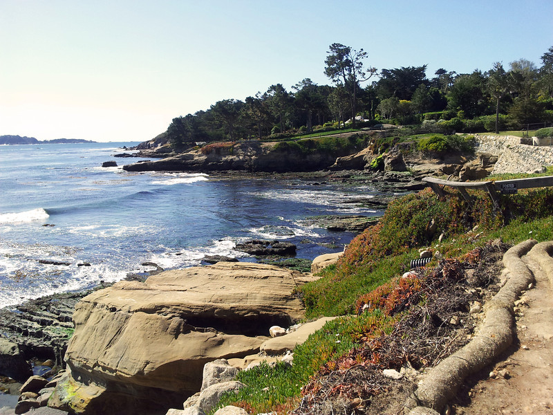 View from The Lodge at Pebble Beach