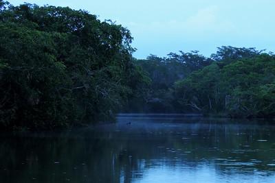 Orange Walk - The River is Quiet