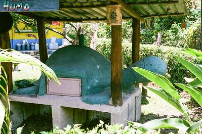 Outdoor turtle oven