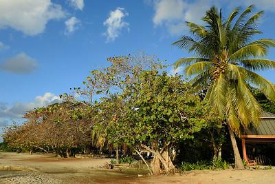 West End - Tropical Beach