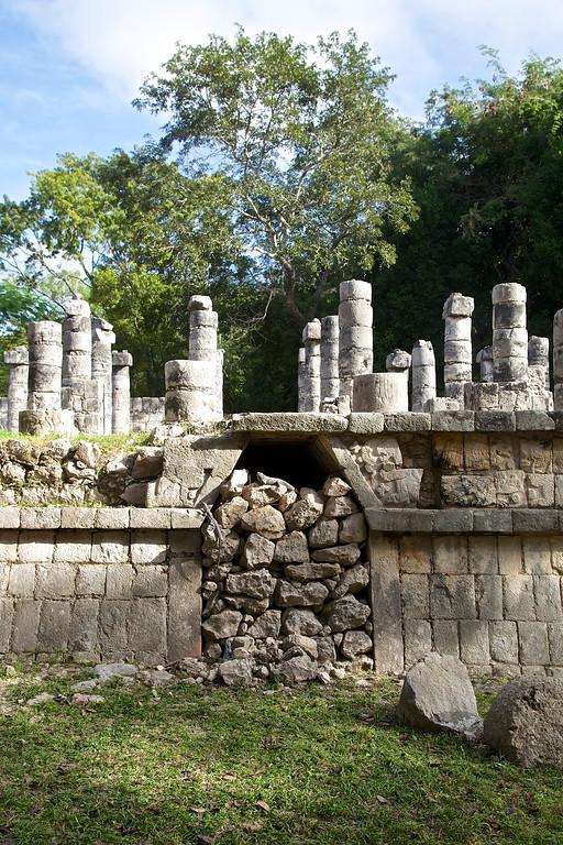 Chichen Itza iguana