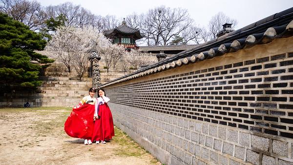 Changdeokgung Spring 2016