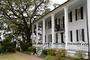 Our photos begin the day after Christmas at Hampton Plantation, south of Myrtle Beach.