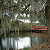 Gardens and Footbridge through the Moss at Magnolia Plantation